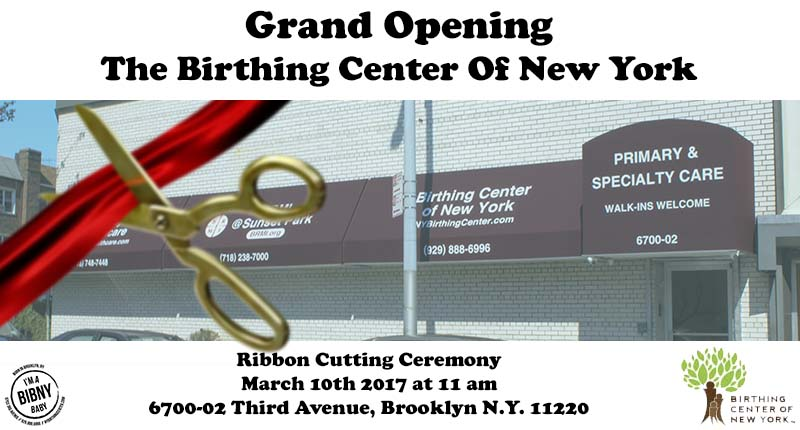 The birthing center of ny opens