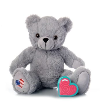 My Baby's Heartbeat Lil' Gray Bear with American Flag Emblem